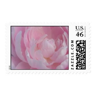 Light Pink Peony Wedding Postage Stamps Peonies stamp