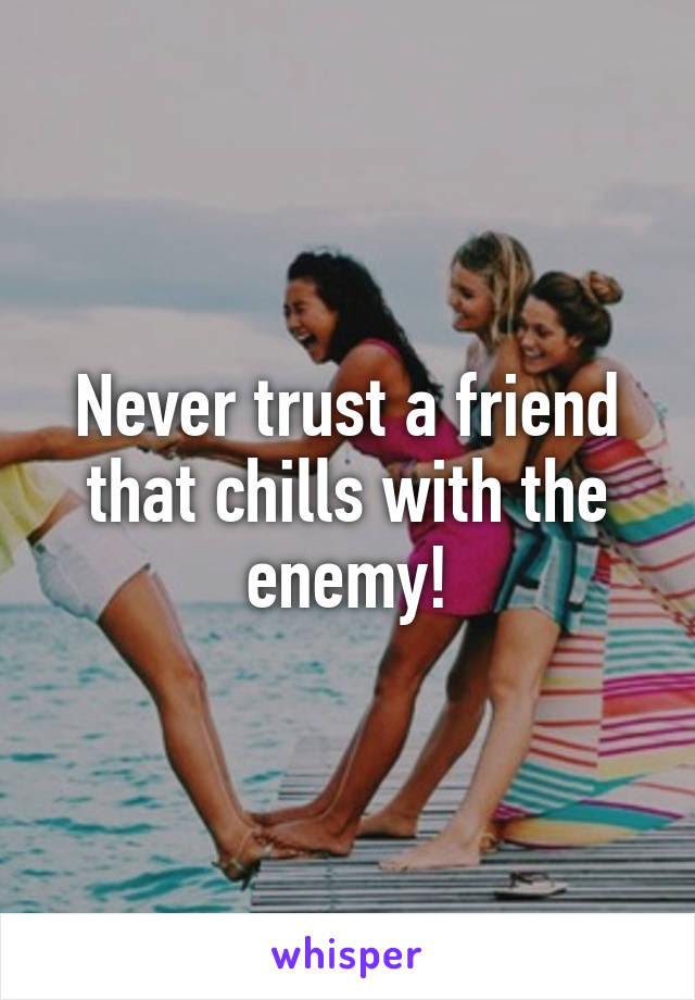 Never Trust A Friend That Chills With The Enemy