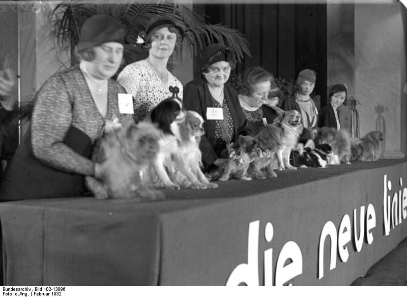 File:Bundesarchiv Bild 102-13096, Berlin, Hundeschau.jpg