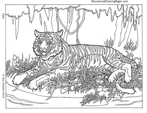 pattern animal coloring pages   print