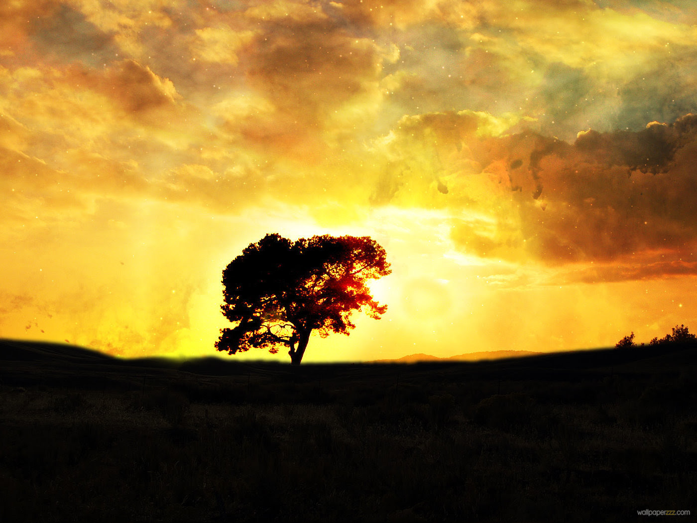 Image result for silhouette tree sunset
