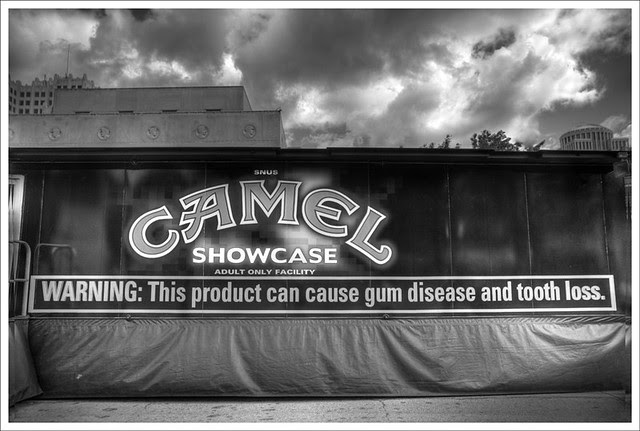 Camel Showcase