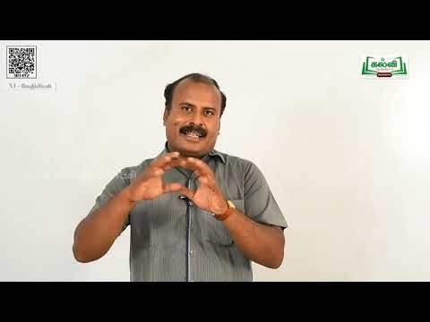 11th Chemistry தனிமங்களின் ஆவத்தன வகைப்பாடு அலகு பகுதி Kalvi TV