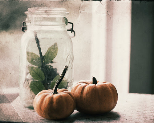 October's the month When the smallest breeze Gives us a shower Of autumn leaves. Bonfires and pumpkins, Leaves sailing down - October is red And golden and brown