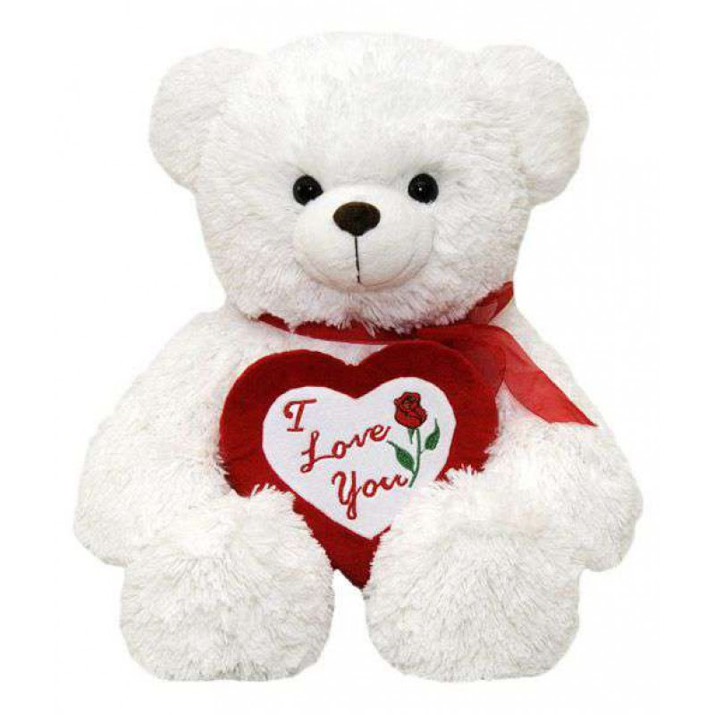 Buy White Teddy Bear Holding Red I Love You Heart Online At Lowest