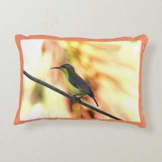 Tropical Bird Decorative Pillow