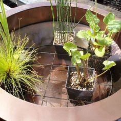 Gardening~ Water Features on Pinterest