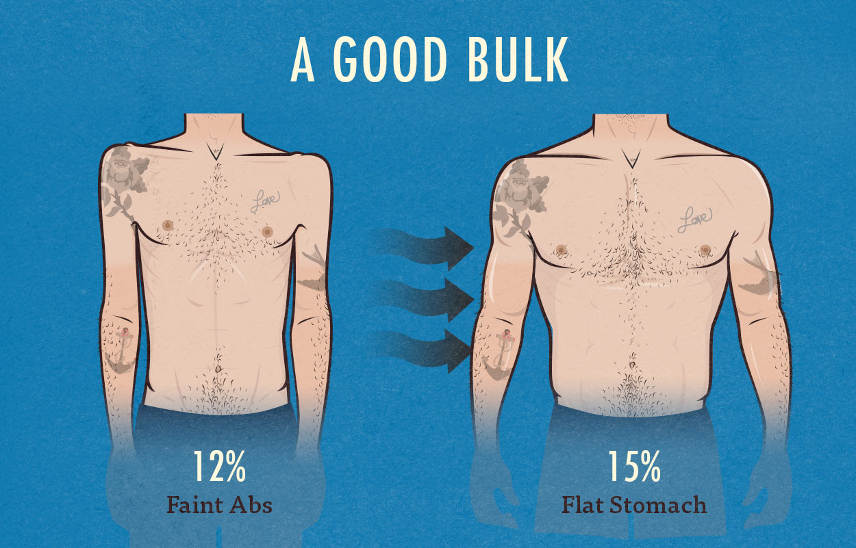 what body fat percentage should i be before bulking