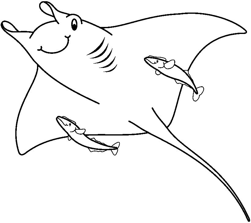 Colorear Animales Marinos Az Dibujos Para Colorear