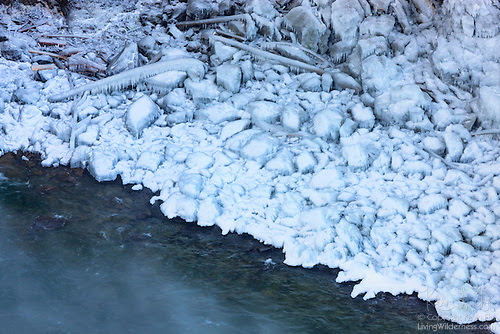 Icy Glaze, Banks of Snoqualmie River, Washington