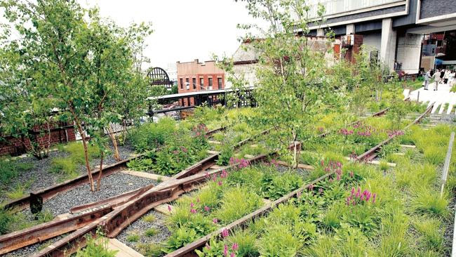 New York's High Line linear park in ...