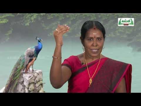 வகுப்பு10 தமிழ் 6கலை அழகியல் புதுமைகள் கவிதைப்பேழை முத்துக்குமாரசாமி பிள்ளைத்தமிழ் Kalvi TV