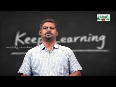 8th Bridge course  English  Grammar Pronouns  Unit 2  Kalvi TV