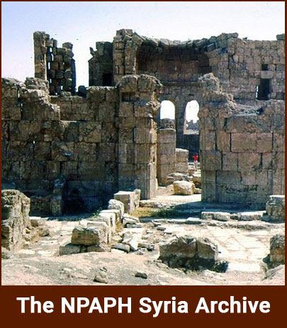 npaph-syria