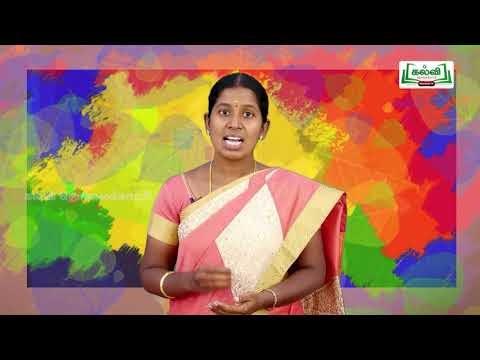 8th Science அளவீட்டியல் அலகு 1 Kalvi TV