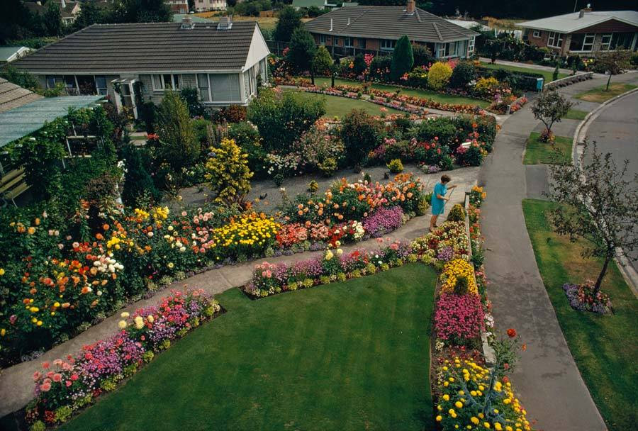 Una vista elevada de los jardines privados en Christchurch, Nueva Zelanda, enero 1972.Photograph por James L. Amos, National Geographic