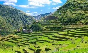 10 Tempat Wisata di Filipina yang Wajib Dikunjungi oleh - wisatafilipina.xyz