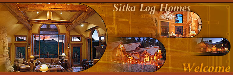 Log Home Info