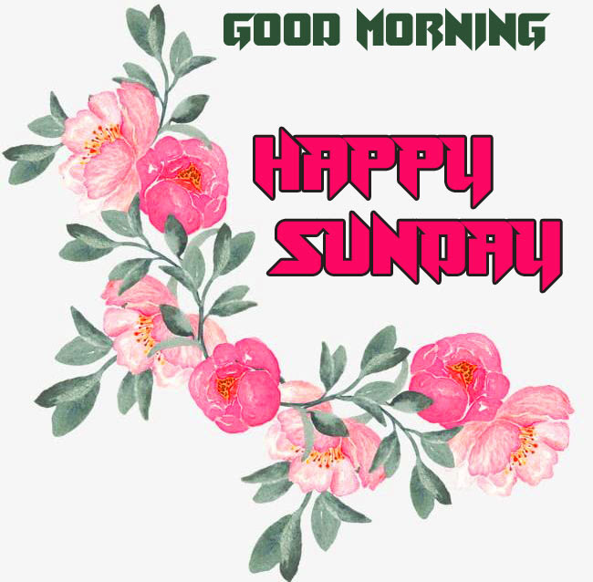 Sunday Good Morning Wishes Images Pics Wallpaper HD