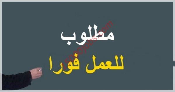 سبلة الوظائف عمان - فرص وظيفية شاغرة بمؤسسة مرموقة بعمان للجنسين