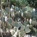 IMG_20121018_133342