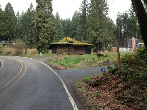Abandoned log cabin on Mason Hill Rd