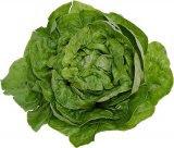 Cura cu salata verde