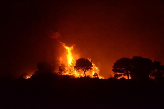 Φωτιές σε Φθιώτιδα και Μέγαρα