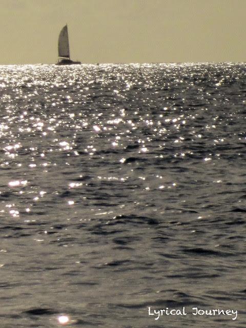 St Maarten 20111117_0406 WM