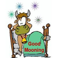 Download Good Morning Category Png Clipart And Icons Freepngclipart