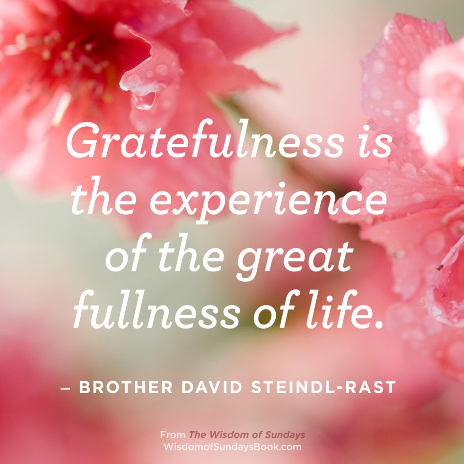The Wisdom Of Sundays Quotes Brother David Steindl Rast