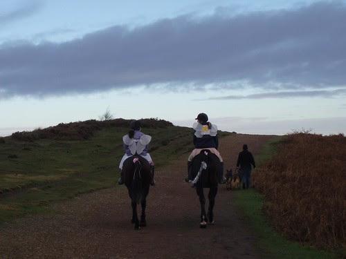 Fairies on Horseback