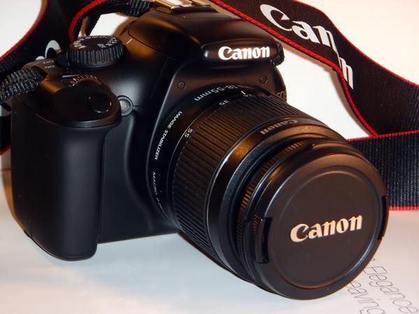 Pics of new camera_01