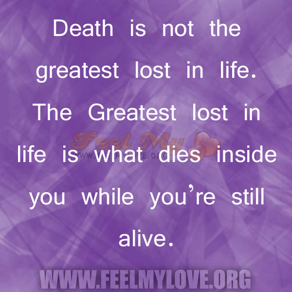 Quotes About Being Lost In Life 29 Quotes