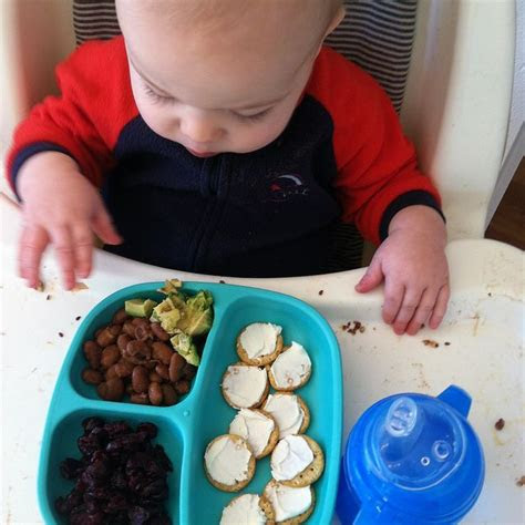 meal  snack ideas   pre toddler   months