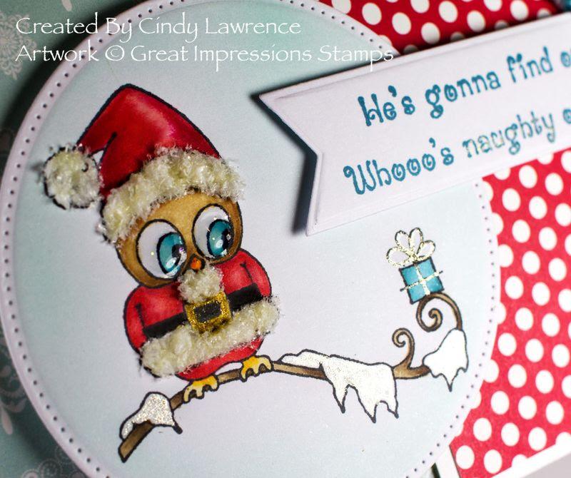 Santa Owl 1 Close-Up - OHS