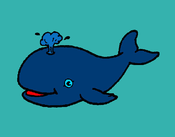 Dibujo De La Ballena Azul Pintado Por Davalos En Dibujosnet El Día