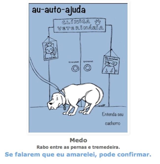 posturas-caninas-4
