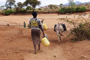 On the way to get water from waterhole