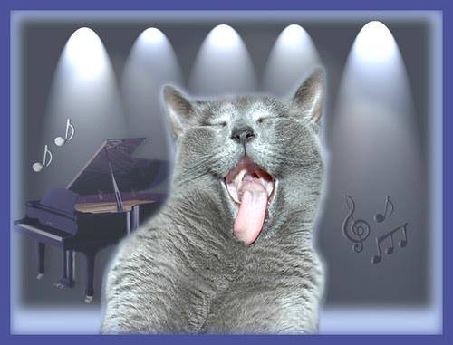 Misha sings the blues
