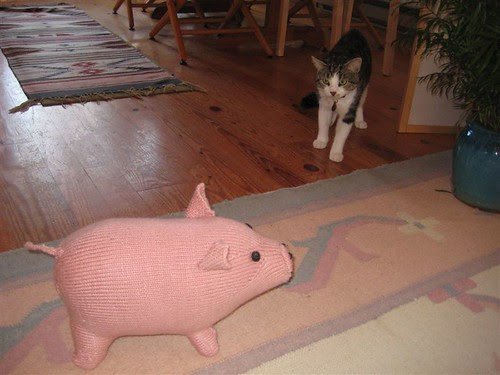 Silas with Betsy's Pig