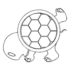 top 20 free printable turtle coloring pages online