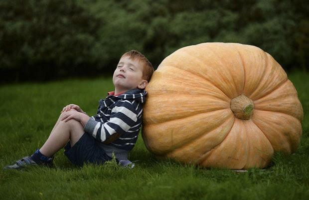 Menino William Orton, de 4 anos, posa com abóbora gigante durante o primeiro dia da feira de jardinagem (Foto: Nigel Roddis/Reuters)