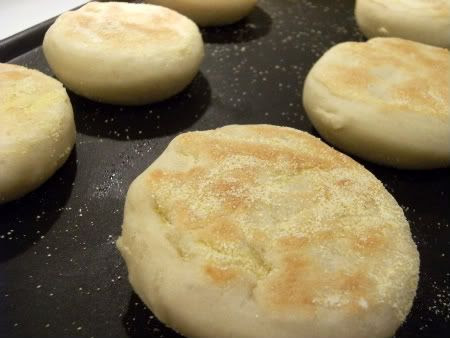 english muffin griddle
