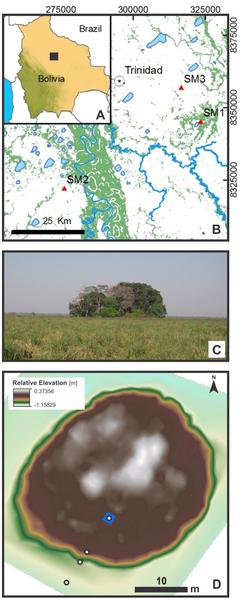 Figura 1 Ubicación geográfica de las tres islas forestales investigados (SM1, SM2 y SM3).