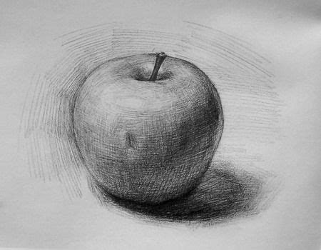draw shade realistic  apple step wise