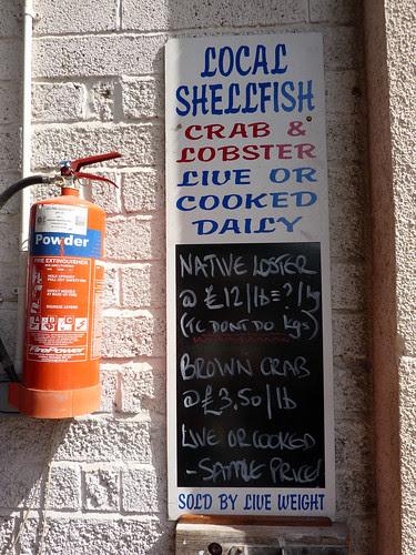 Local shellfish sign