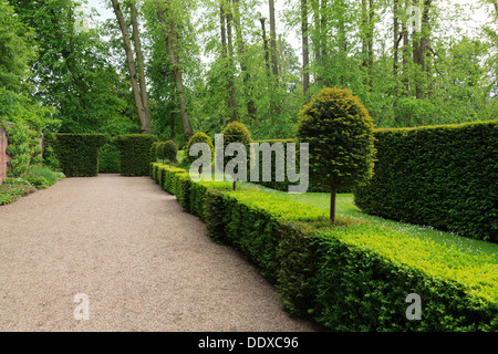 topiary in erddig hall gardens ddxc96