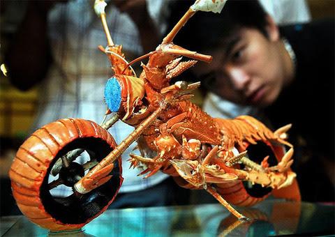 lobster_bike_05