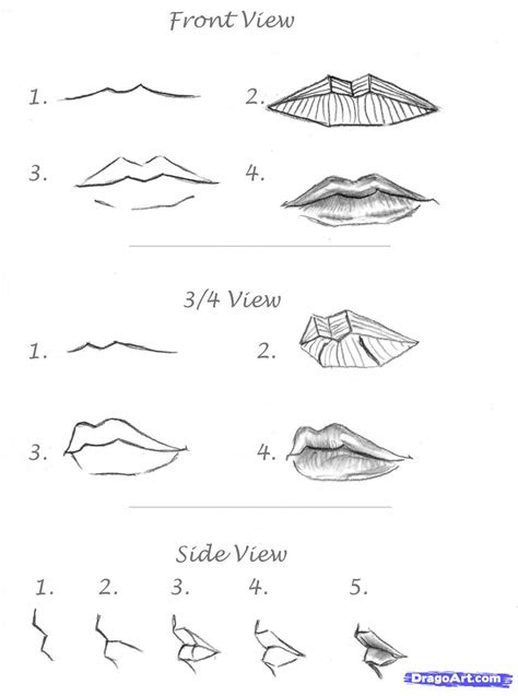 draw realistic lips sketch lips step  step